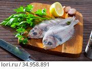 Fresh megrim sole flatfish on wooden board. Стоковое фото, фотограф Яков Филимонов / Фотобанк Лори