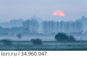 Glastonbury Tor viewed across Somerset Levels, at sunrise. Somerset, England, UK. May 2016. Стоковое фото, фотограф Guy Edwardes / Nature Picture Library / Фотобанк Лори