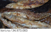 Close-up view of cooking frying capelin fish in iron pan. Grilled caplin fish - popular Asian cuisine. Стоковое видео, видеограф А. А. Пирагис / Фотобанк Лори
