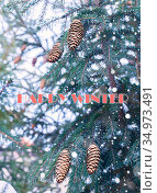 Card with a wish of a happy winter with a picture of spruce and cones. Стоковое фото, фотограф Анна Майорова / Фотобанк Лори