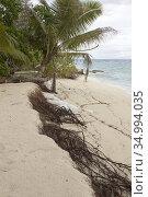 Beach erosion on Denis Island, Seychelles. Стоковое фото, фотограф Andre Maslennikov / age Fotostock / Фотобанк Лори