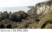 Hooken Undercliff, a massive landslip on the Jurassic Coast, that happened in 1790, now colonised by scrub and woodland, Devon, UK, March 2020, Стоковое фото, фотограф John Waters / Nature Picture Library / Фотобанк Лори