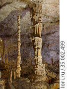 Limestone cave interior with spectacular ornate columns formed by hanging stalactites and rising stalagmites coalescing, Drach caves / Cuevas del Drach, Porto Cristo, Mallorca, August 2018. Стоковое фото, фотограф Nick Upton / Nature Picture Library / Фотобанк Лори