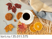 Cup of black coffee on a gray background with autumn leaves, a warm cape, a wicker napkin, oatmeal cookies and slices of dried oranges. Стоковое фото, фотограф Ольга Губская / Фотобанк Лори
