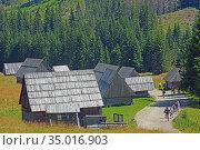 Wooden huts in the Chocholowska Clearing. Стоковое фото, фотограф Ignacy Wojciech Pilch / age Fotostock / Фотобанк Лори