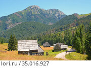 Wooden huts, the way, Mokiniarski Wierch. Стоковое фото, фотограф Ignacy Wojciech Pilch / age Fotostock / Фотобанк Лори