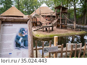 Zoo sign about the Mandrill (Mandrillus sphinx) in front of the enclosure... Редакционное фото, фотограф Edwin Giesbers / Nature Picture Library / Фотобанк Лори
