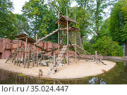 Barbary macaques (Macaca sylvanus) in their enriched outdoor enclosure... Редакционное фото, фотограф Edwin Giesbers / Nature Picture Library / Фотобанк Лори