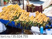 Row corn cobs are on sale in stall. Fruit and vegetable marketplace is in Alanya, Turkey. Стоковое фото, фотограф Кекяляйнен Андрей / Фотобанк Лори