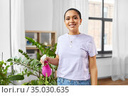 woman spraying houseplant with water at home. Стоковое фото, фотограф Syda Productions / Фотобанк Лори