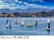 Sailboats in the Ria de Vigo, View from Baiona, Pontevedra, Galicia... Стоковое фото, фотограф Javier Larrea / age Fotostock / Фотобанк Лори