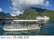 Guests of Paul Gauguin cruise anchored in Moorea, Cook's Capitan ... Редакционное фото, фотограф Sergi Reboredo / age Fotostock / Фотобанк Лори