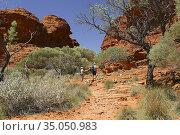 Beautiful nature near Alice Springs, Northern Territory, Australia.. Стоковое фото, фотограф Andre Maslennikov / age Fotostock / Фотобанк Лори