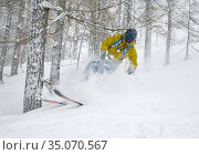 Krippenbrunn, Austria, skier drives in deep snow and bumps into a branch (2019 год). Редакционное фото, агентство Caro Photoagency / Фотобанк Лори