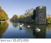 The Bishop's Palace moat and wall in autumn in the city of Wells, ... Стоковое фото, фотограф Craig Joiner / age Fotostock / Фотобанк Лори