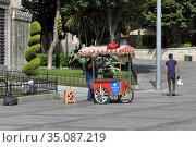 Roasted chestnut vendor standing in front of Hagia Sophia. Sultanahmet neighbourhood, City of Istanbul, Turkey. Редакционное фото, фотограф Bala-Kate / Фотобанк Лори