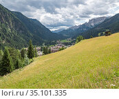 View across meadow in Fassa Valley to Campitello di Fassa. Dolomites, Trentino, Italy. July 2019. Стоковое фото, фотограф Paul  Harcourt Davies / Nature Picture Library / Фотобанк Лори