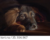 Portrait of german shepherd puppy in oil painting style. Стоковая иллюстрация, иллюстратор Julia Shepeleva / Фотобанк Лори