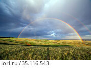 Magnificent rainbow over the forest and steppe Spring evening. Стоковое фото, фотограф Акиньшин Владимир / Фотобанк Лори