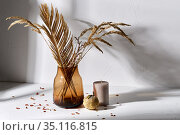 dried flowers in glass vase candle and pumpkin. Стоковое фото, фотограф Syda Productions / Фотобанк Лори