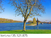 Uferpromenade, Fluß, Rhein, neuer Hafen. Стоковое фото, фотограф Bernd J. W. Fiedler / age Fotostock / Фотобанк Лори
