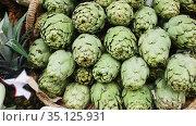 Pile of fresh young buds of artichokes on showcase of greengrocery. Стоковое видео, видеограф Яков Филимонов / Фотобанк Лори
