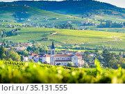 Paysage et vignobles du Beaujolais, Fleurie et Villié-Morgon, France. Стоковое фото, фотограф Fontaine Gäel / easy Fotostock / Фотобанк Лори