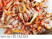 Langoustines on counter. Стоковое фото, фотограф Яков Филимонов / Фотобанк Лори