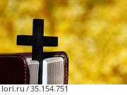 Broom in bloom in spring. Bible and christian cross on yellow background... Стоковое фото, фотограф Fred de Noyelle / Godong / age Fotostock / Фотобанк Лори