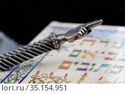 A silver Yad Jewish ritual pointer on a Torah. France. Стоковое фото, фотограф Fred de Noyelle / Godong / age Fotostock / Фотобанк Лори