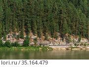 Река с названием - Лебедь, в окружении хвойной сибирской тайги на скальных выходах. Турочакский район республики Алтай близ села Турочак. Стоковое фото, фотограф Евгений Мухортов / Фотобанк Лори
