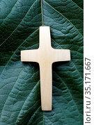 Christian cross on a green leaf. France. Стоковое фото, фотограф Fred de Noyelle / Godong / age Fotostock / Фотобанк Лори