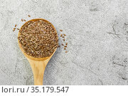 Food background, oil seed, flax seeds in a wooden spoon, food supplement for digestion, omega-3 source of vitamins and fatty acid antioxidants, herbal medicine remedy on natural gray concrete. Стоковое фото, фотограф Светлана Евграфова / Фотобанк Лори