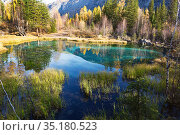 Turquoise thermal lake in Ulagan district near the village of Aktash in autumn. Altai Republic, Russia. Стоковое фото, фотограф Наталья Волкова / Фотобанк Лори