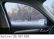 View from the car to the winter birch forest. Стоковое фото, фотограф Юрий Бизгаймер / Фотобанк Лори