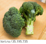 healthy broccoli and florets on wooden board. Стоковое фото, фотограф Татьяна Яцевич / Фотобанк Лори