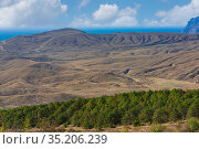 Sandy and loamy hills with stands of forest strips on the seashore. Стоковое фото, фотограф Владимир Ушаров / Фотобанк Лори