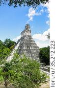 Temple No. 1t, Tikal, UNESCO World Heritage Site, Tikal National Park, Peten, Guatemala. Стоковое фото, фотограф Николай Коржов / Фотобанк Лори