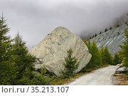 Glacial erratic at the side of track in mountains. Zermatt, Valais, Switzerland. September 2019. Стоковое фото, фотограф Graham Eaton / Nature Picture Library / Фотобанк Лори