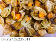Physalis peruviana yellow, edible physalis species. Vegetarian dish. Стоковое фото, фотограф Яков Филимонов / Фотобанк Лори