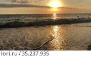 Песчаный пляж на Средиземном море во время заката, волны плещут о берег. Турция. Стоковое видео, видеограф Кекяляйнен Андрей / Фотобанк Лори