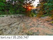 Вид с Лысой горы на набережную реки Солотча. Стоковое фото, фотограф Михаил Куликов / Фотобанк Лори