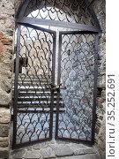 Metal lattice doors in an old castle (2019 год). Стоковое фото, фотограф Юрий Бизгаймер / Фотобанк Лори
