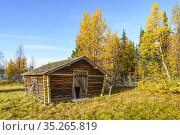 Old barn in autumn season with colorfull trees and blue sky, Gällivare... Стоковое фото, фотограф Mats Lindberg / age Fotostock / Фотобанк Лори