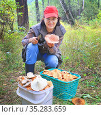 young beautiful woman picks mushrooms in the autumn forest. Стоковое фото, фотограф Акиньшин Владимир / Фотобанк Лори