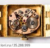 Механизм старых наручных часы Accurist. Редакционное фото, фотограф Игорь Низов / Фотобанк Лори