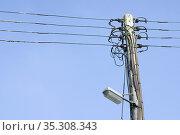 An old electric pole, Suffolk, United Kingdom. Стоковое фото, фотограф Dariusz Gora / easy Fotostock / Фотобанк Лори