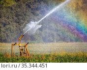 Ruebenfeld is irrigated during drought, Inden, North Rhine-Westphalia, Germany. Редакционное фото, агентство Caro Photoagency / Фотобанк Лори