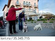 Croatia, Opatija - seaside resort on the Kvarner bay with monuments of Austrian-Hungarian past (2016 год). Редакционное фото, агентство Caro Photoagency / Фотобанк Лори