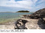 Croatia, Prementura - Aquatic sediments, nature reserve Cape Kamenjak, on the southern tip of Istria (2016 год). Редакционное фото, агентство Caro Photoagency / Фотобанк Лори